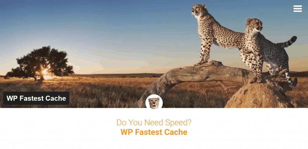 WordPress caching, alles wat je moet weten over server en browser caching. 5